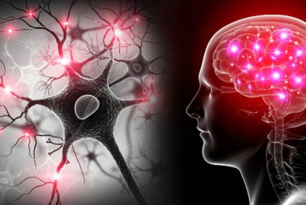Neurociencia: Sentimientos de autoconsciencia y la marca h2o Studio